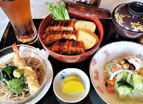 渡辺水産 お手軽鰻丼ランチ 1日5食限定